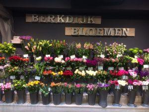 berkdijk bloemen