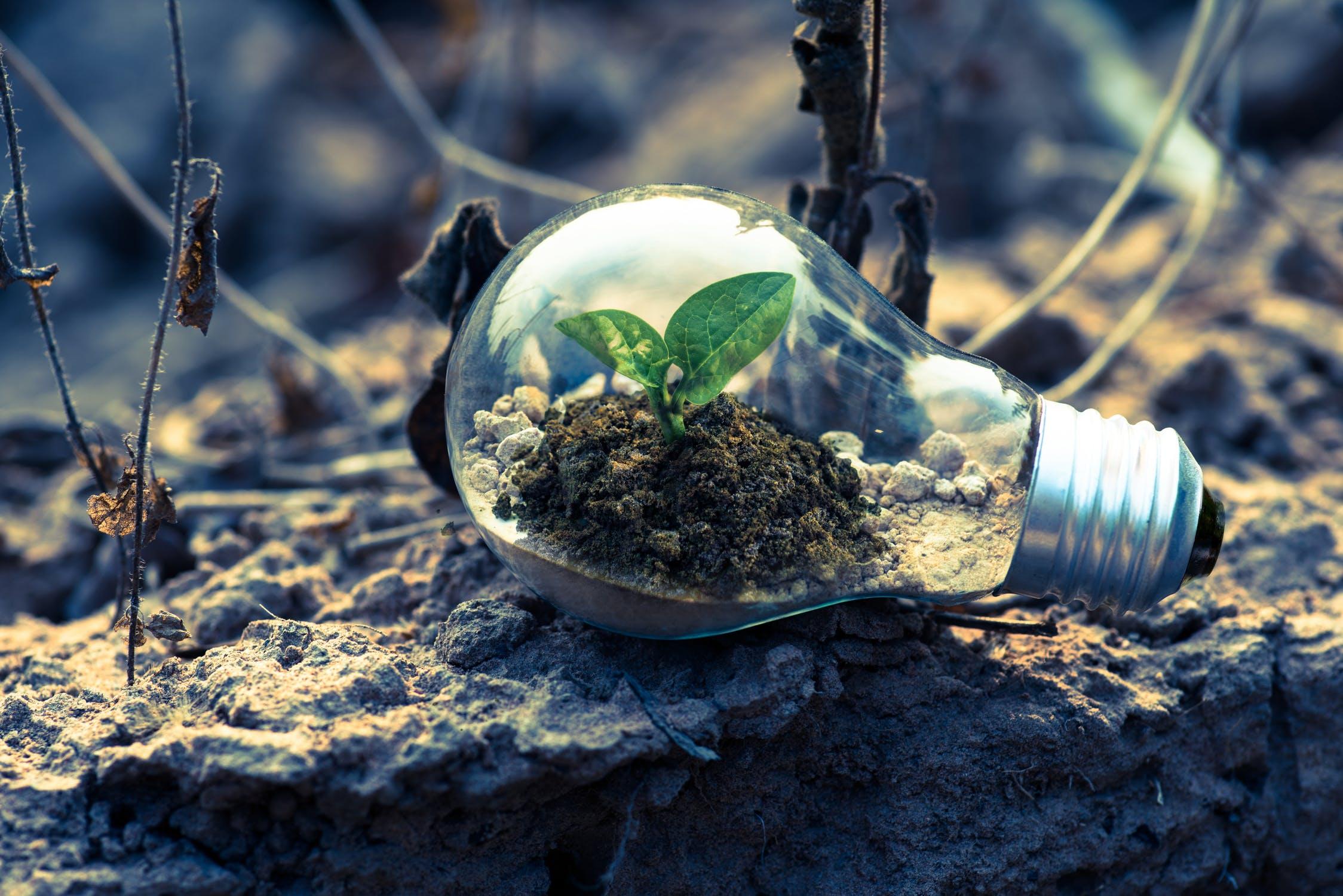 Hoe geld te besparen met groene energie bij je thuis
